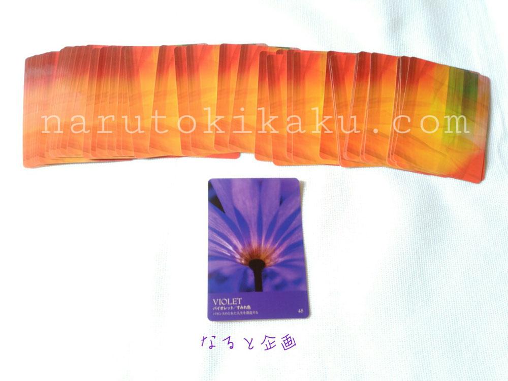 カラーカード バイオレット