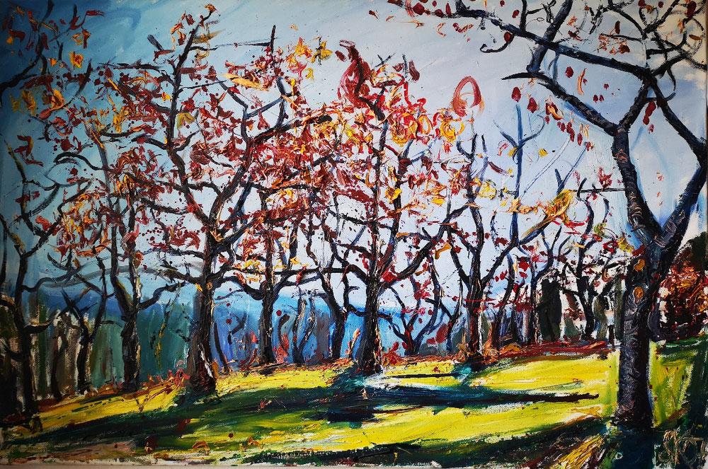 Kirschbäume im Herbst 2007