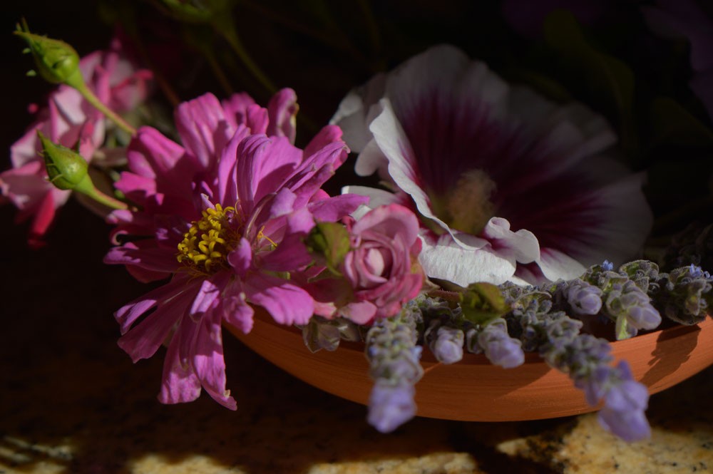 bowl with zinnias, lavender, and miniature rose