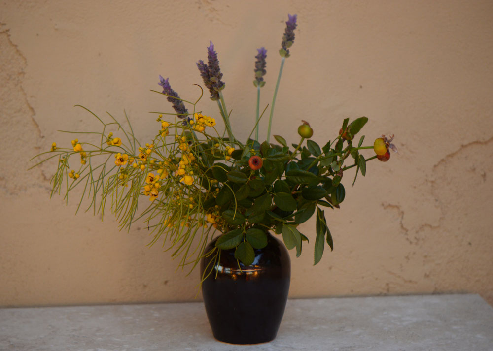 small sunny garden, desert garden, amy myers, photography, in a vase on monday, iavom, monday vase, pottery, stoneware, ceramics, lavender, lavandula dentata, senna, nemophila, rose, hips, heps
