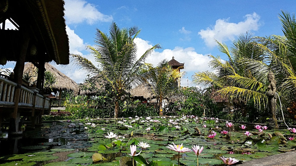 Ubud / Bali