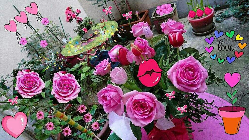 💖  Lovée au Coeur des Roses  🌹