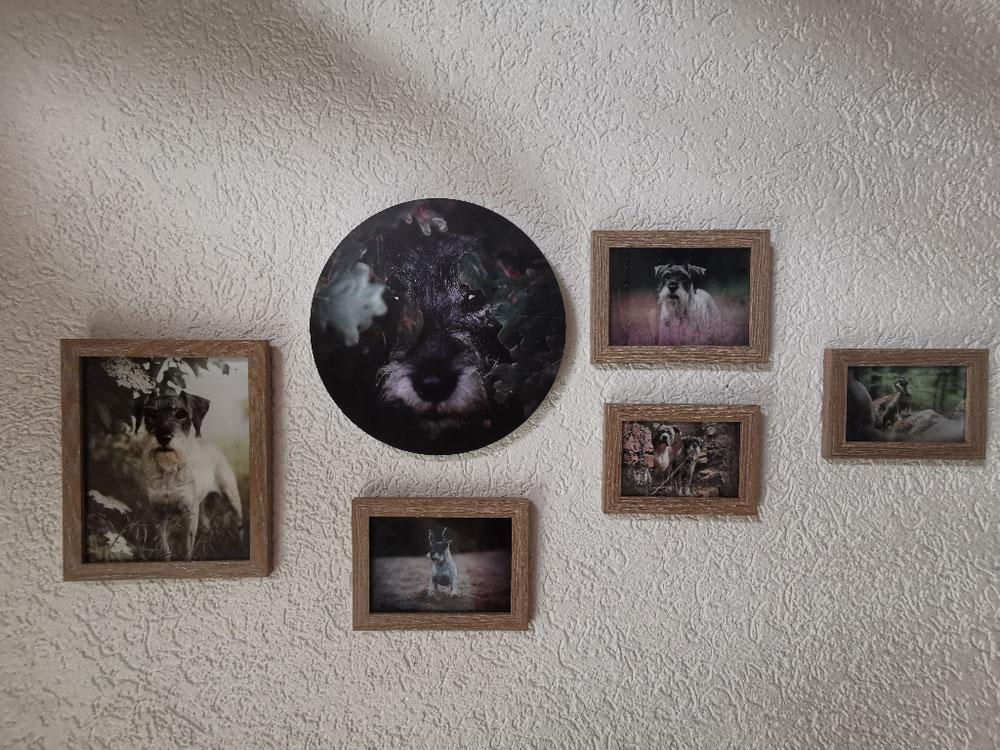 Wandbild aus verschiedenen Produkten