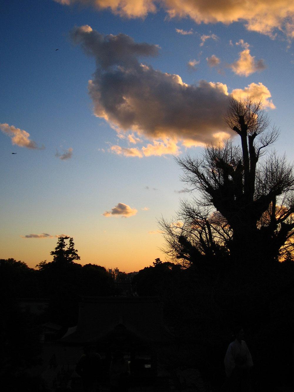 ◆鎌倉鶴岡八幡宮より南の空。