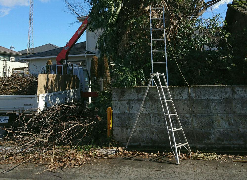 庭木の伐採も、剪定もお任せ下さい