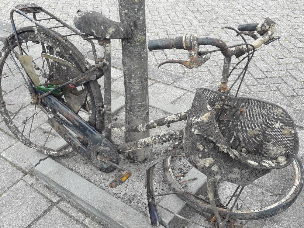 ....unser Fahrrad ist ins Wasser gefallen.....