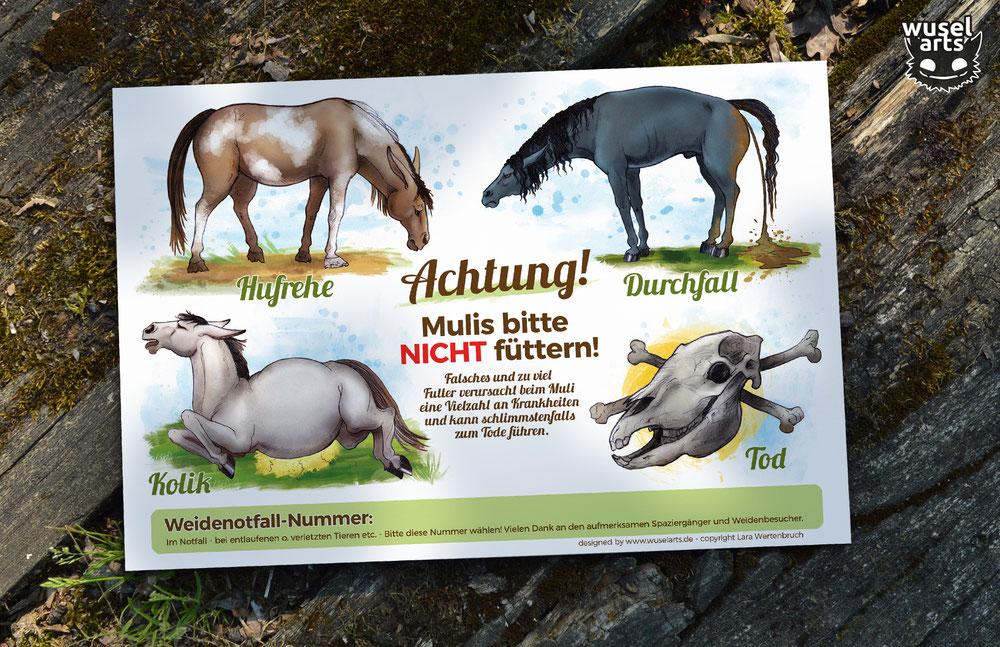 """""""Mulis bitte nicht füttern!"""" Schild warnt vor Folgen durch falsches Futter: Hufrehe, Kolik und schlimmstenfalls Tod des Mulis"""