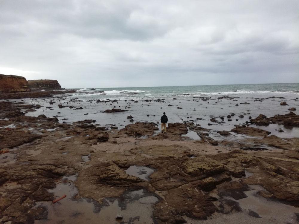 ... vorbei an der Curio Bay ...