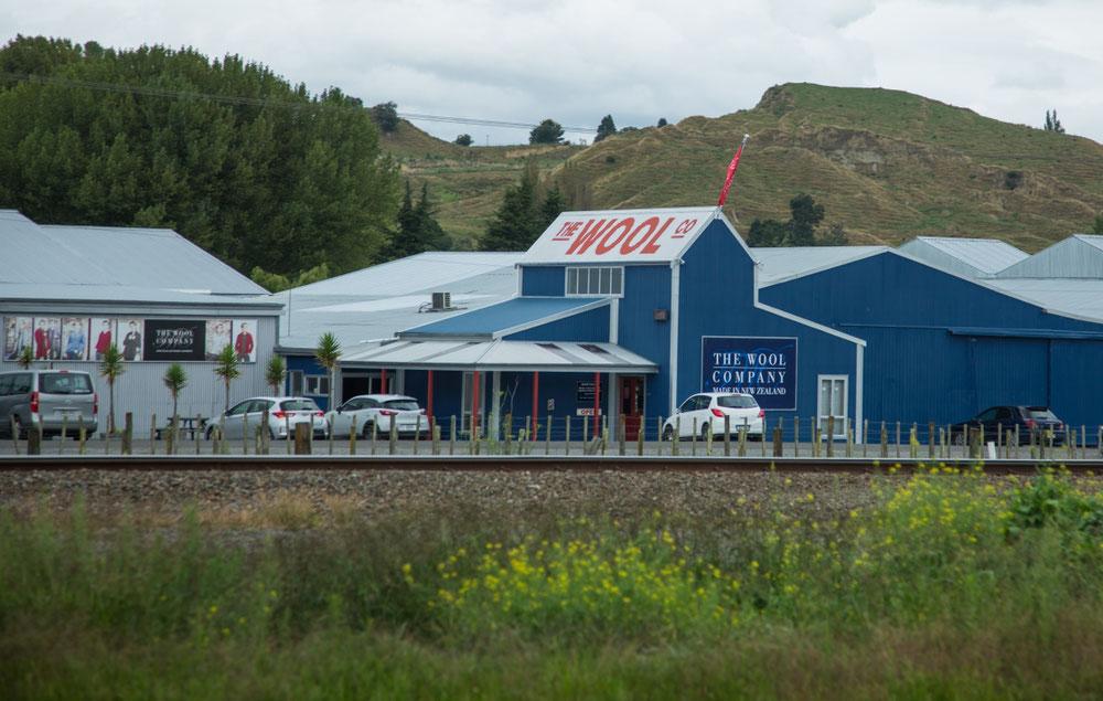 In Neuseeland wird viel auf Wolle gesetzt. Auf vier Millionen Einwohner kommen vierzig Millionen Schafe!!