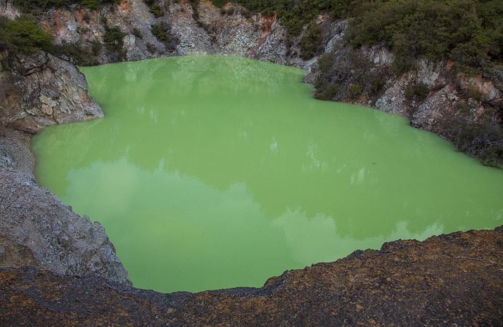... das ist nämlich Devil's Bath. Tauschen sollte man bei all dem schönen Antlitz nicht, der Badezusatz ist nämlich hoch toxisch.