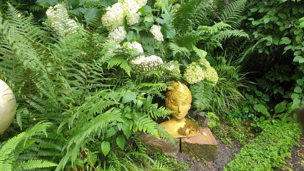 Alles o.k die Annabells liegen mit der Blüte auf dem Farn.