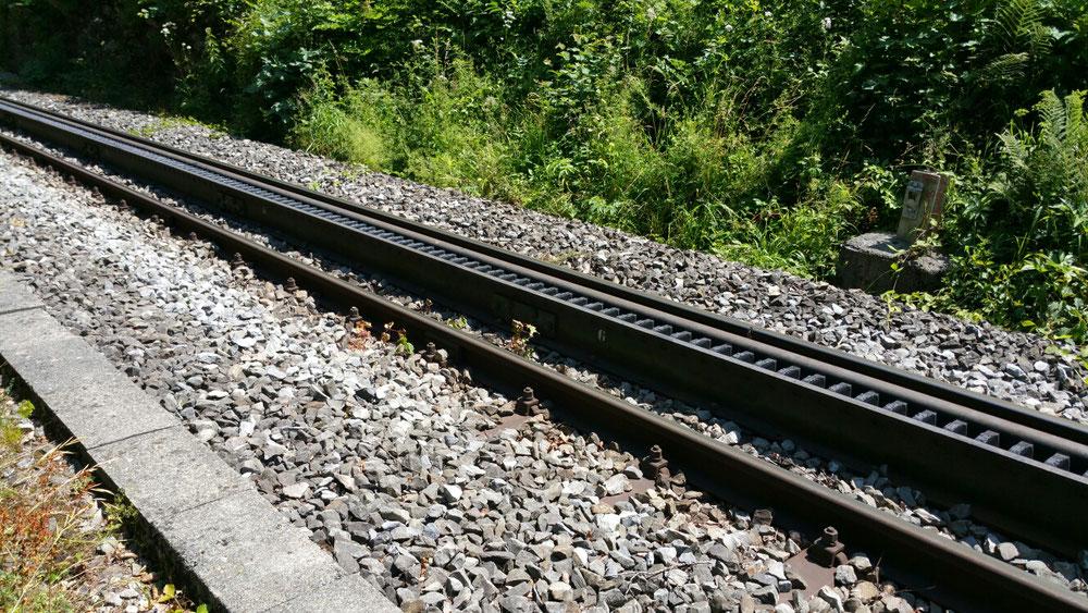 Der weg nach Brienz verläuft teilweise neben der Zahnradbahn
