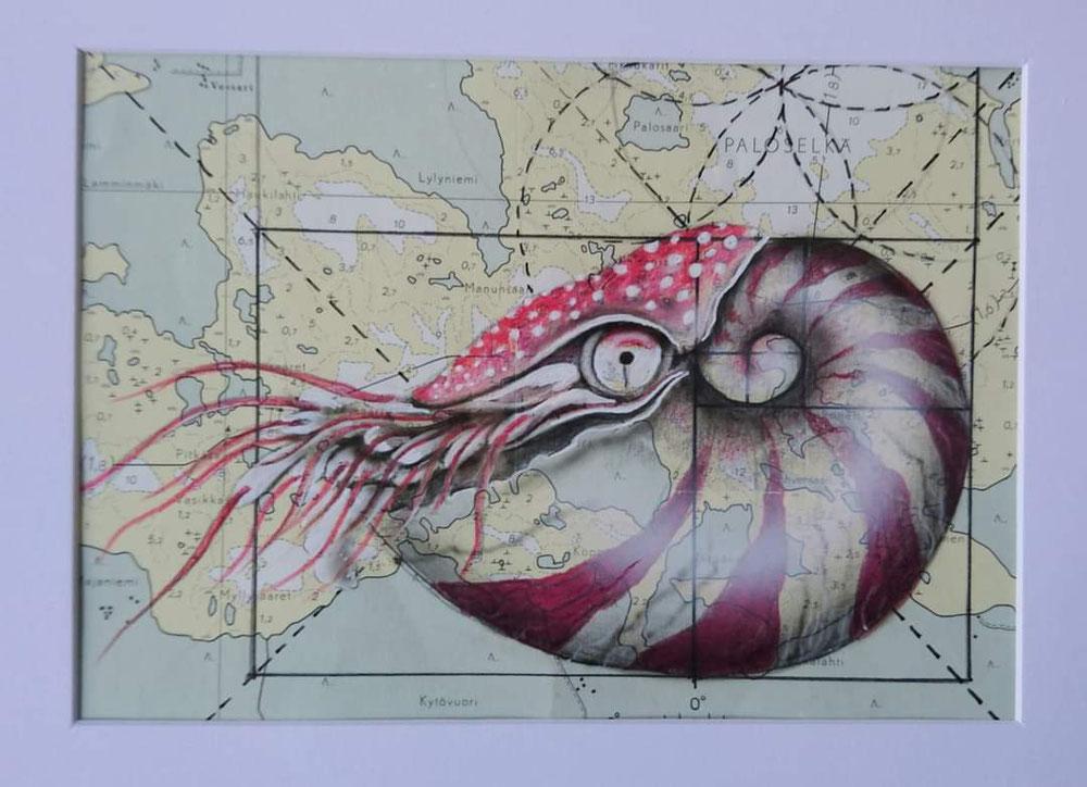 Nautilus auf einer alten Seekarte