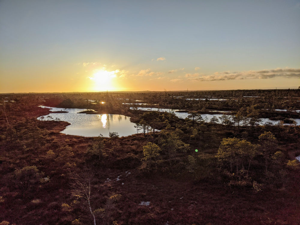 Bei Sonnenaufgang sind wir da: Kemeri Nationalpark