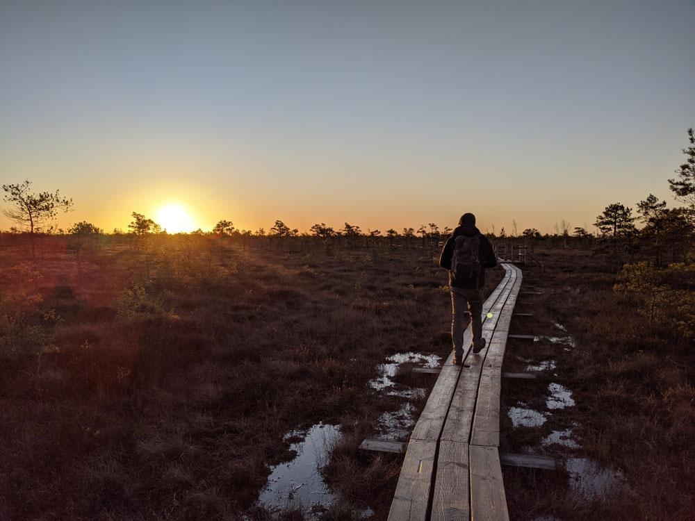 Auf dem schmalen Holzweg: einen Fuß vor den anderen