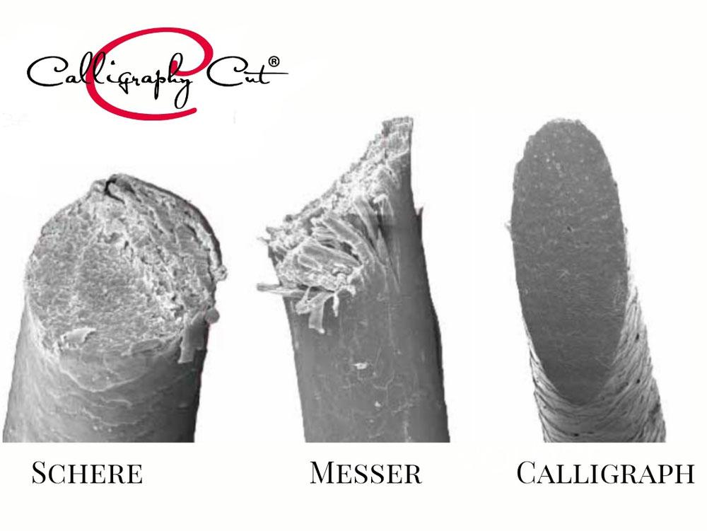 Vergleich der Haarspitzen mit den verschiedenen Schneide Tools
