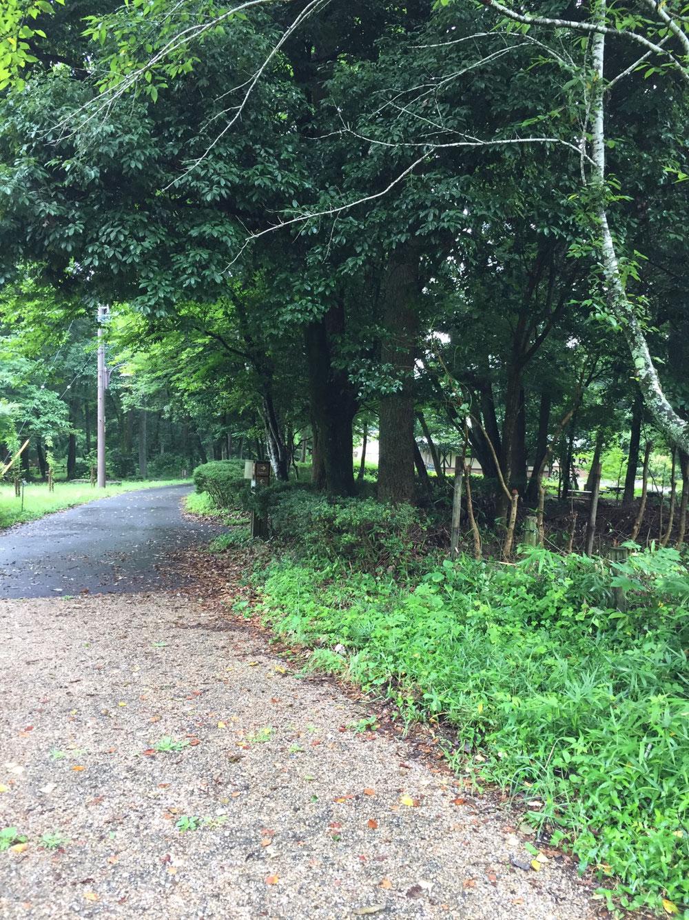 長良川ふれあいの森