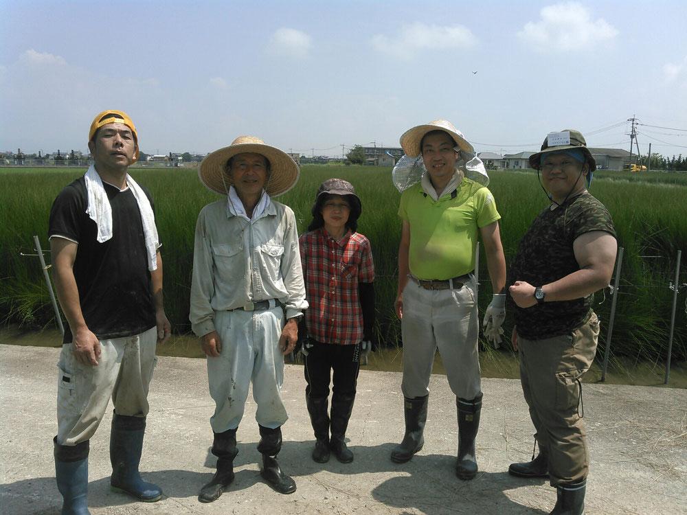 い草生産者の橋口様ご夫婦と刈り取り研修が一緒でした、愛知県の鈴木さんと伊藤さんとの写真です。
