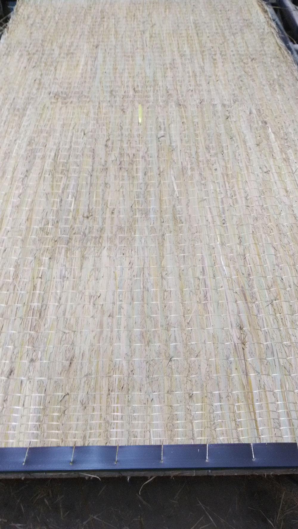 本床(藁床)宮城産並三級を使用して、新畳作業です。