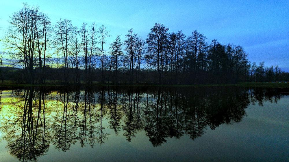 Sonnenuntergang am See mit Bäumen im Hintergrund blau und grün