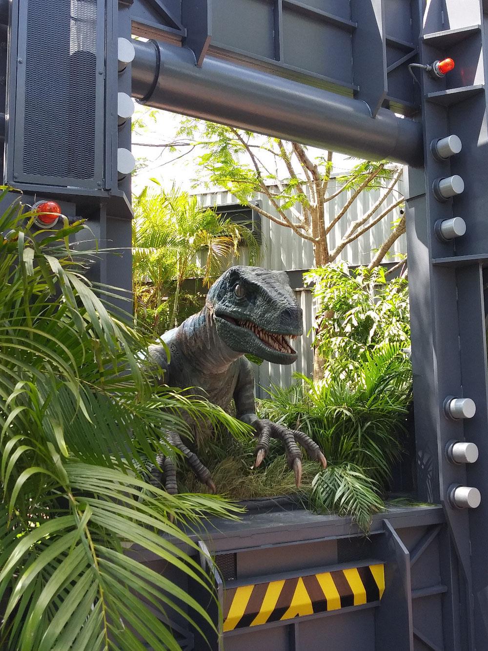 恐竜との撮影も。暑い中なので司会が長いとブーイングされてました。(笑)