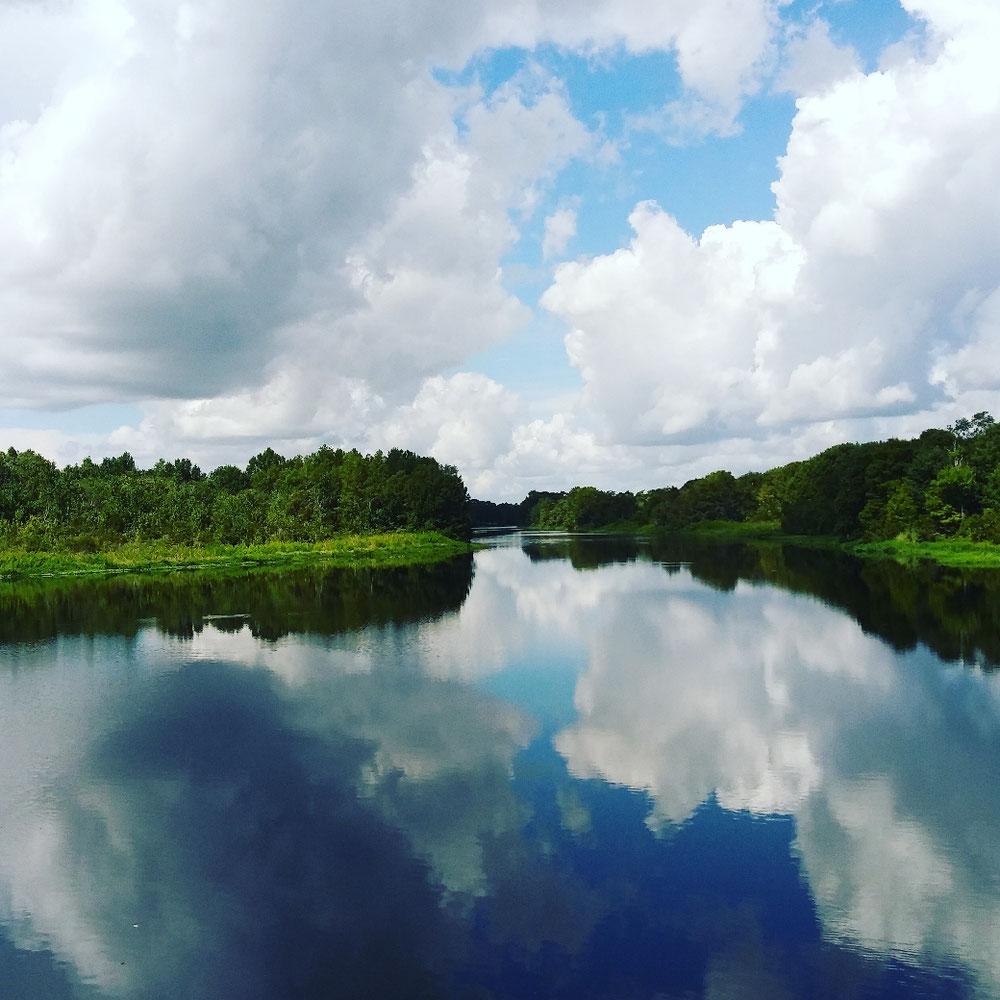 川にかかる橋の上から。川と森と空の水面鏡です。