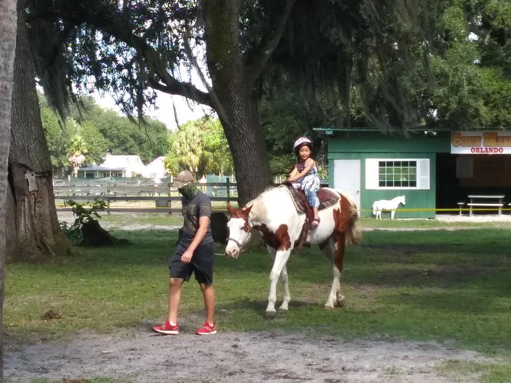 馬は暴れたりしないで優しく子供たちに接してくれました。