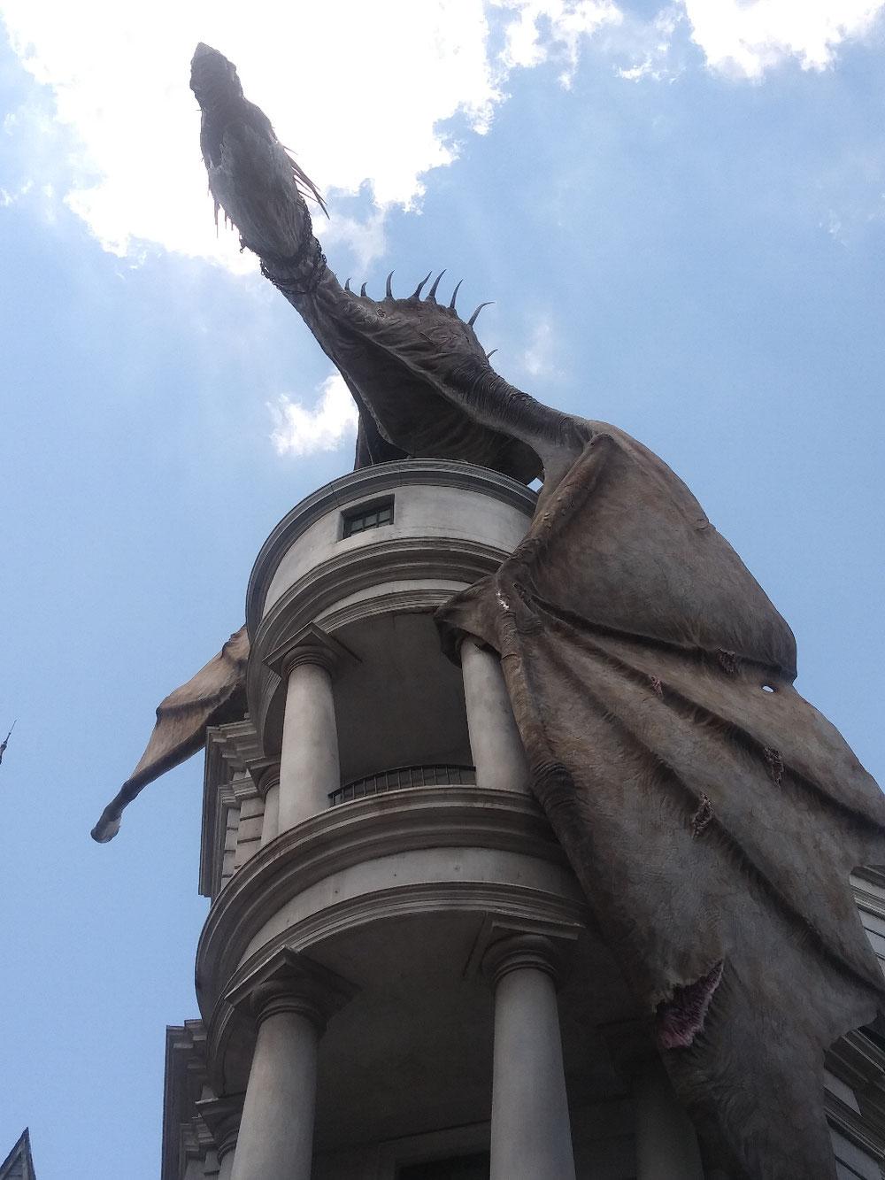 ドラゴンを真下から撮影