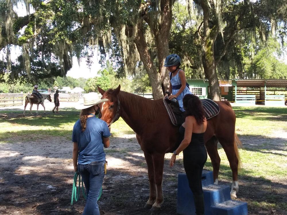 結構な大きさの馬!