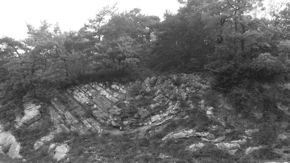 Geologischer Aufschluss an der Straße nach Saou
