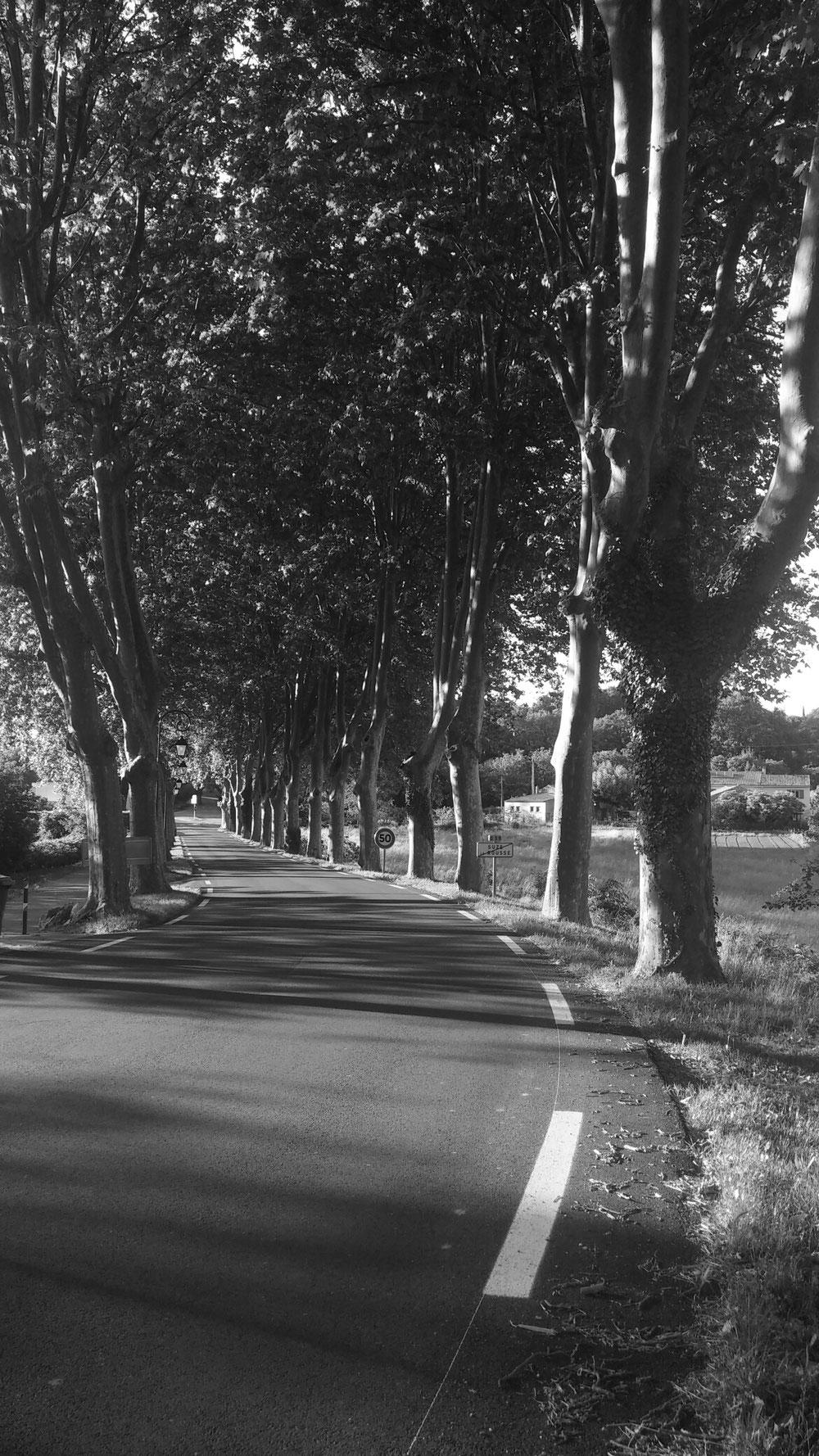 Die Straße nach Suze-la-Rousse