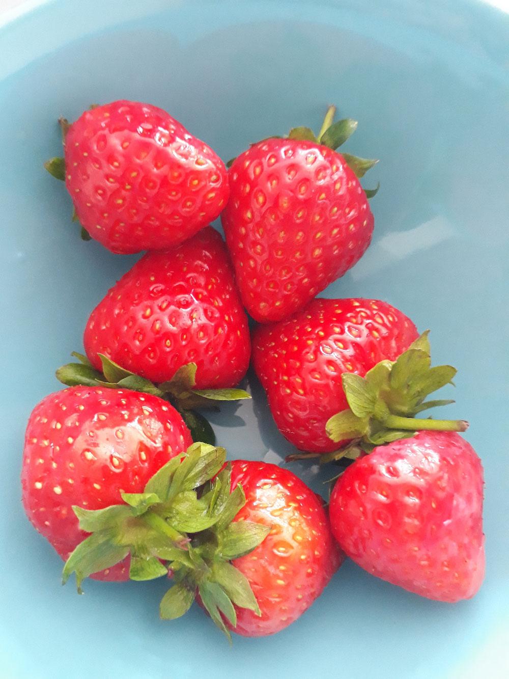 1 portion de fruits = 150g de fraises