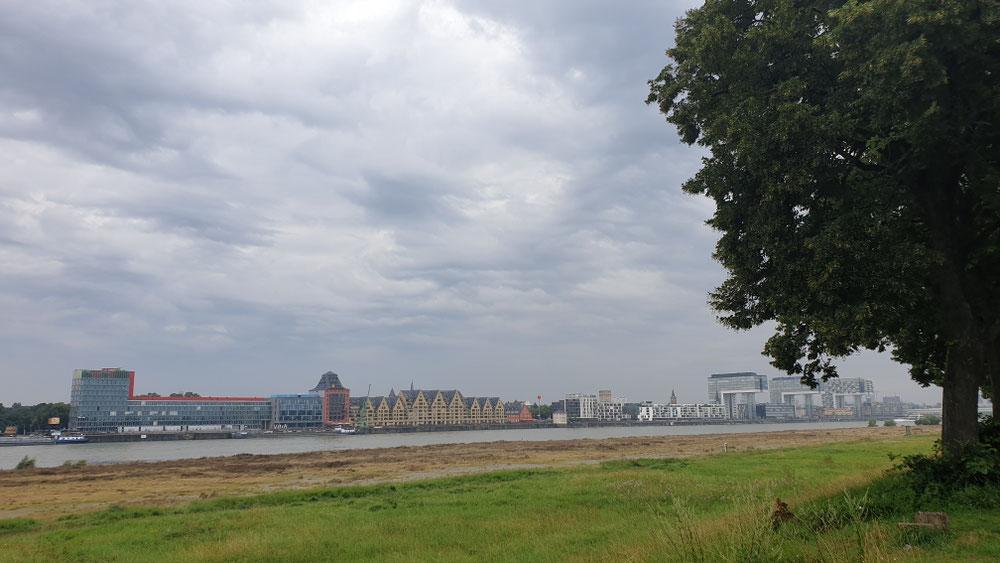 Köln in Sicht