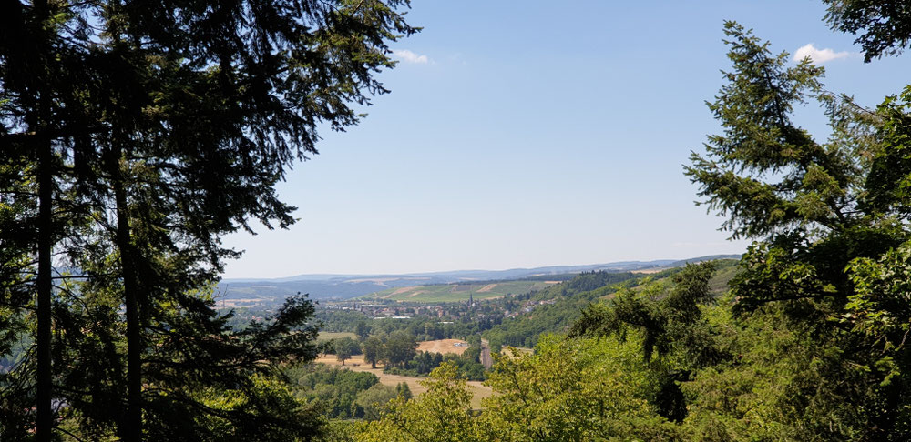 Blick nach Meisenheim