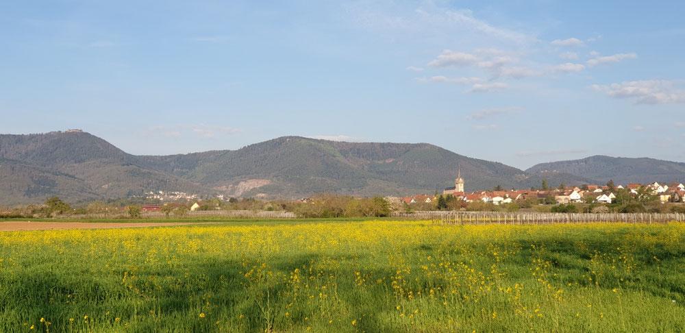 J'aime l'Alsace