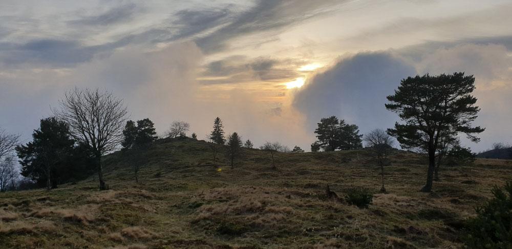 Sonnenuntergang am Lingekopf