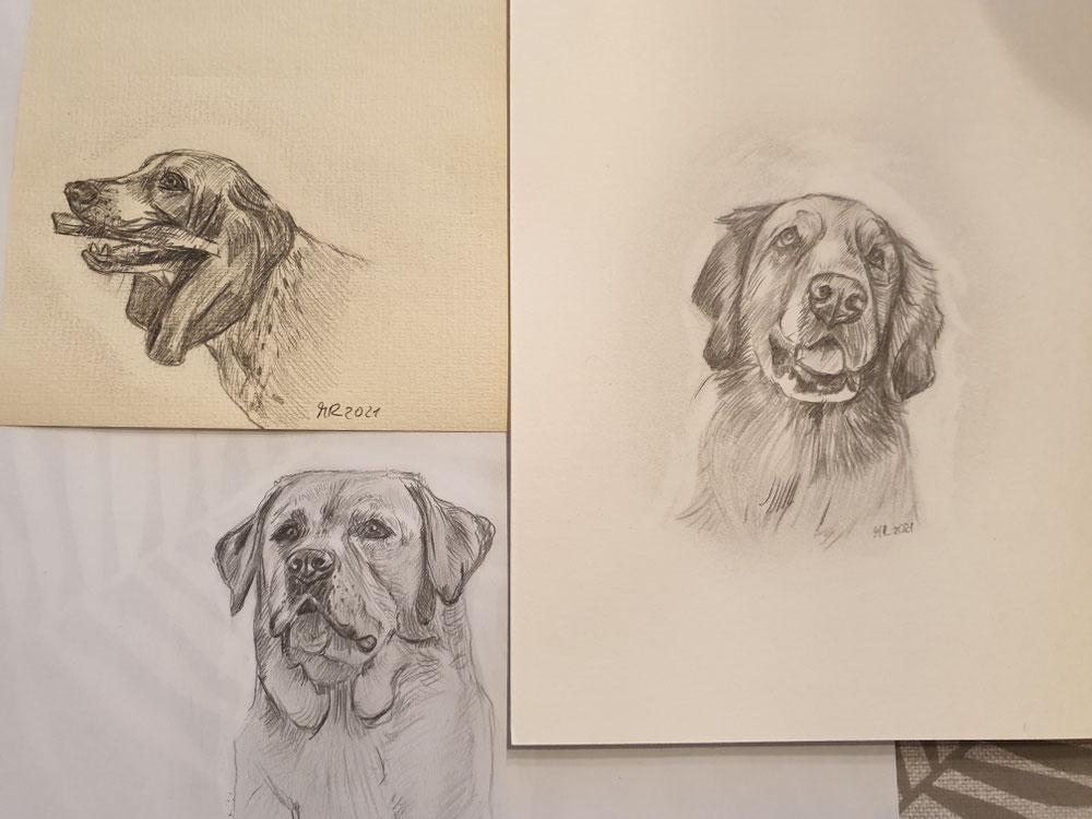 Kleine Bleistift-Zeichnungen