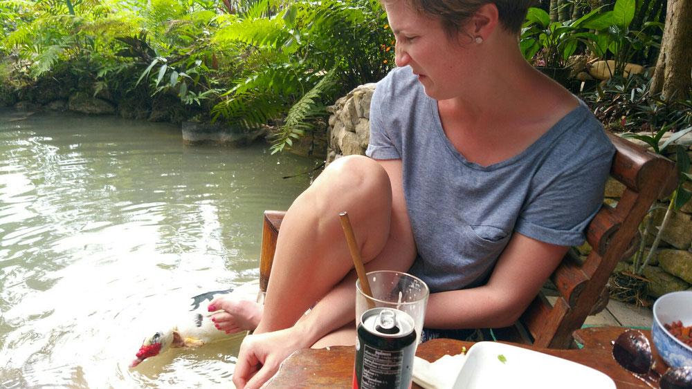 Andrea wurde beim essen von einer Ente belästigt