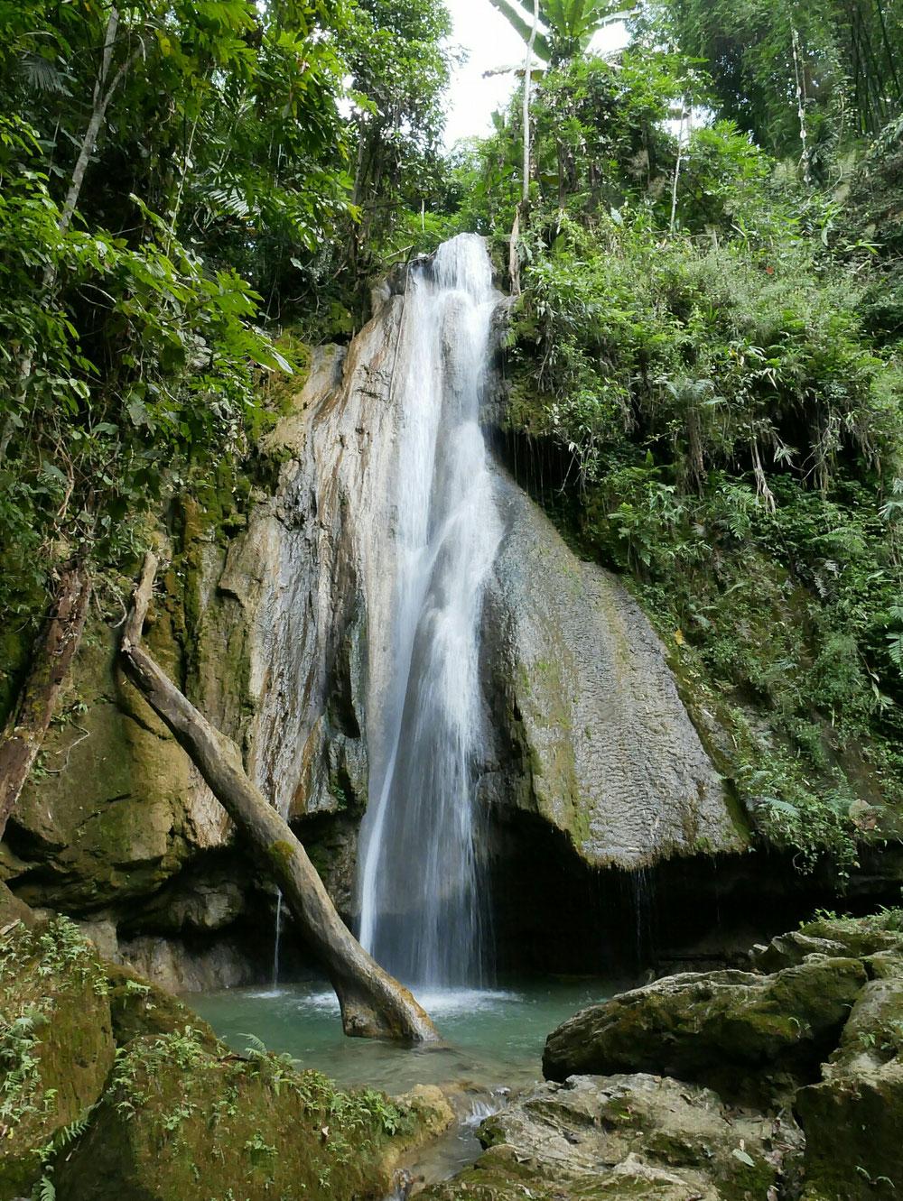 """Mitten im Dschungel dieser Anblick - im """"Pool"""" gab es außerdem ein erfrischenden Bad"""