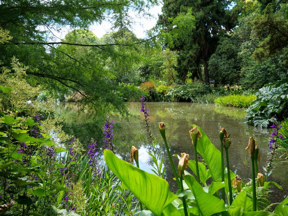 Was nen toller Garten :)))