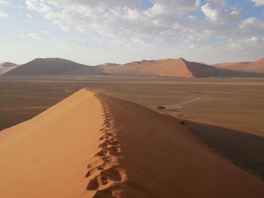 Sand soweit das Auge reicht, Namib Naukluft Park