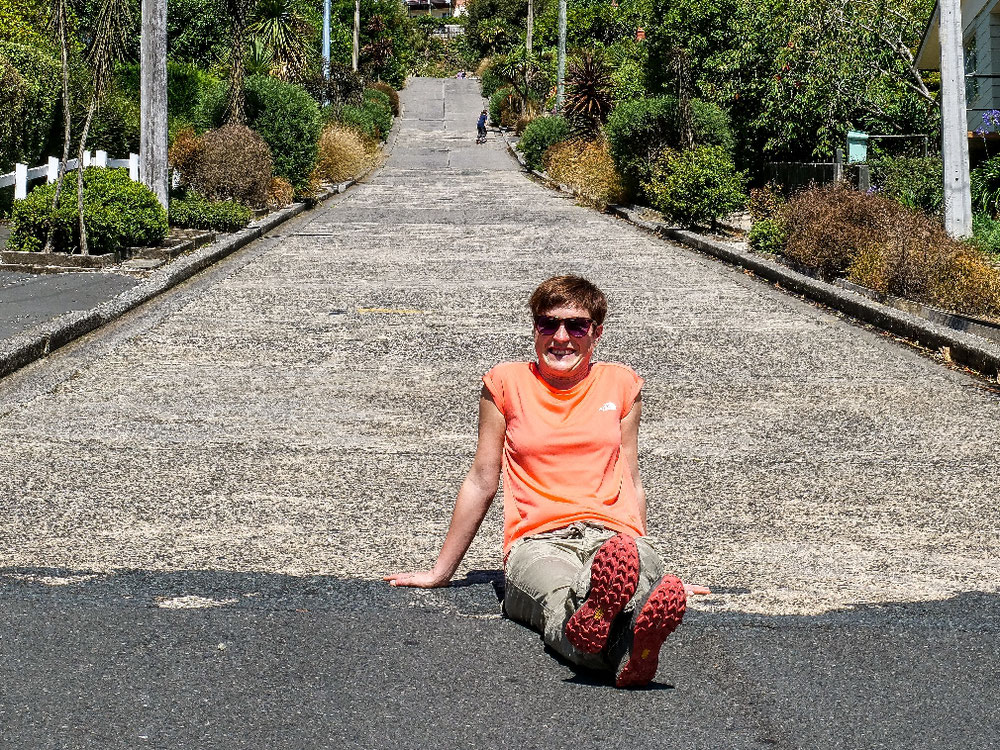 Steilste Straße der Welt. Keiner fährt - wohl zu steil oder einfach zu unwichtig.