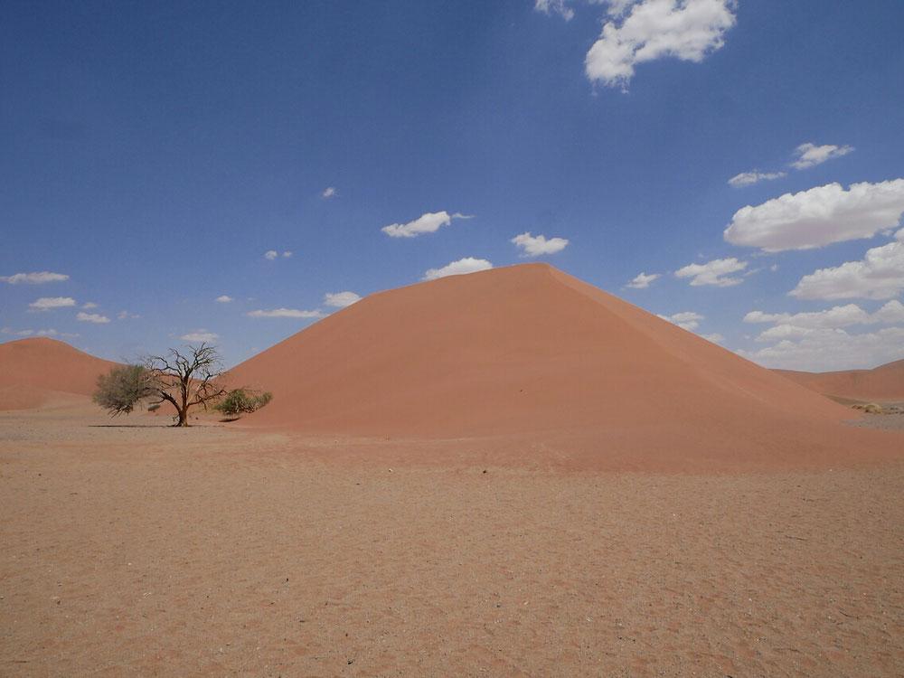 Eine schöne rote Düne in der Wüste