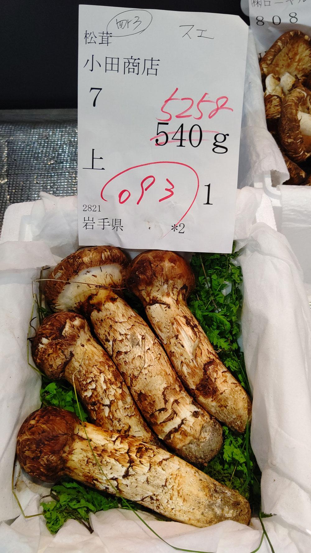 岩手県産松茸