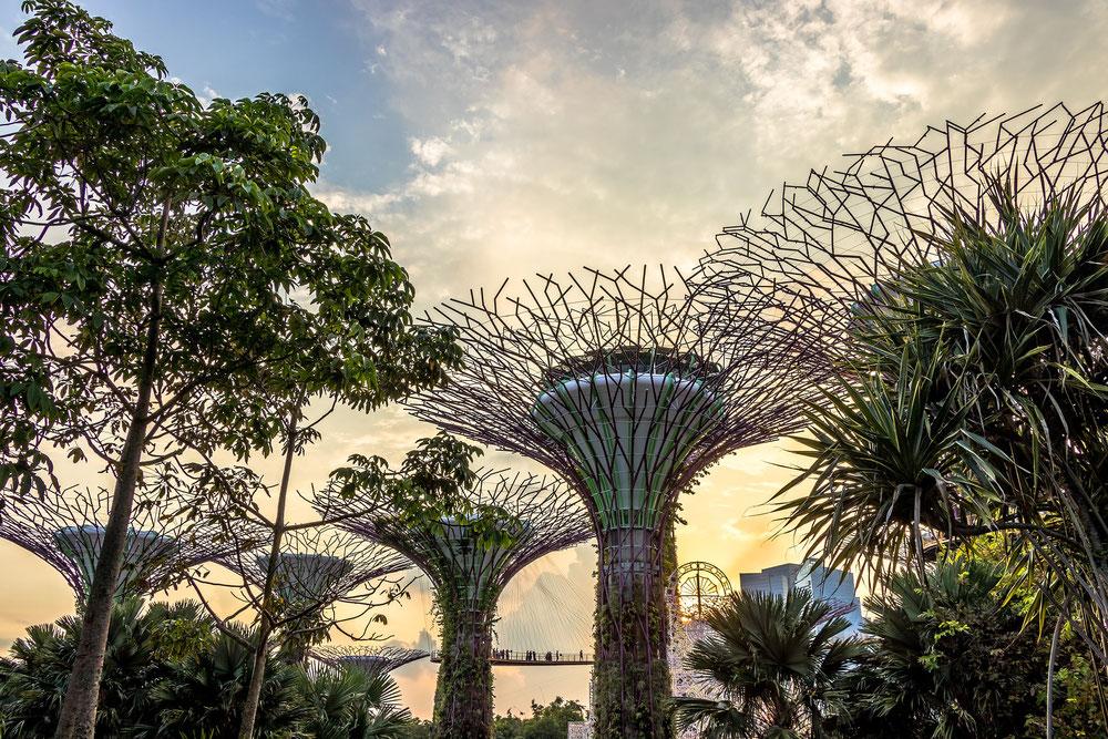 Singapur - faszinierend und erholsam zu gleich