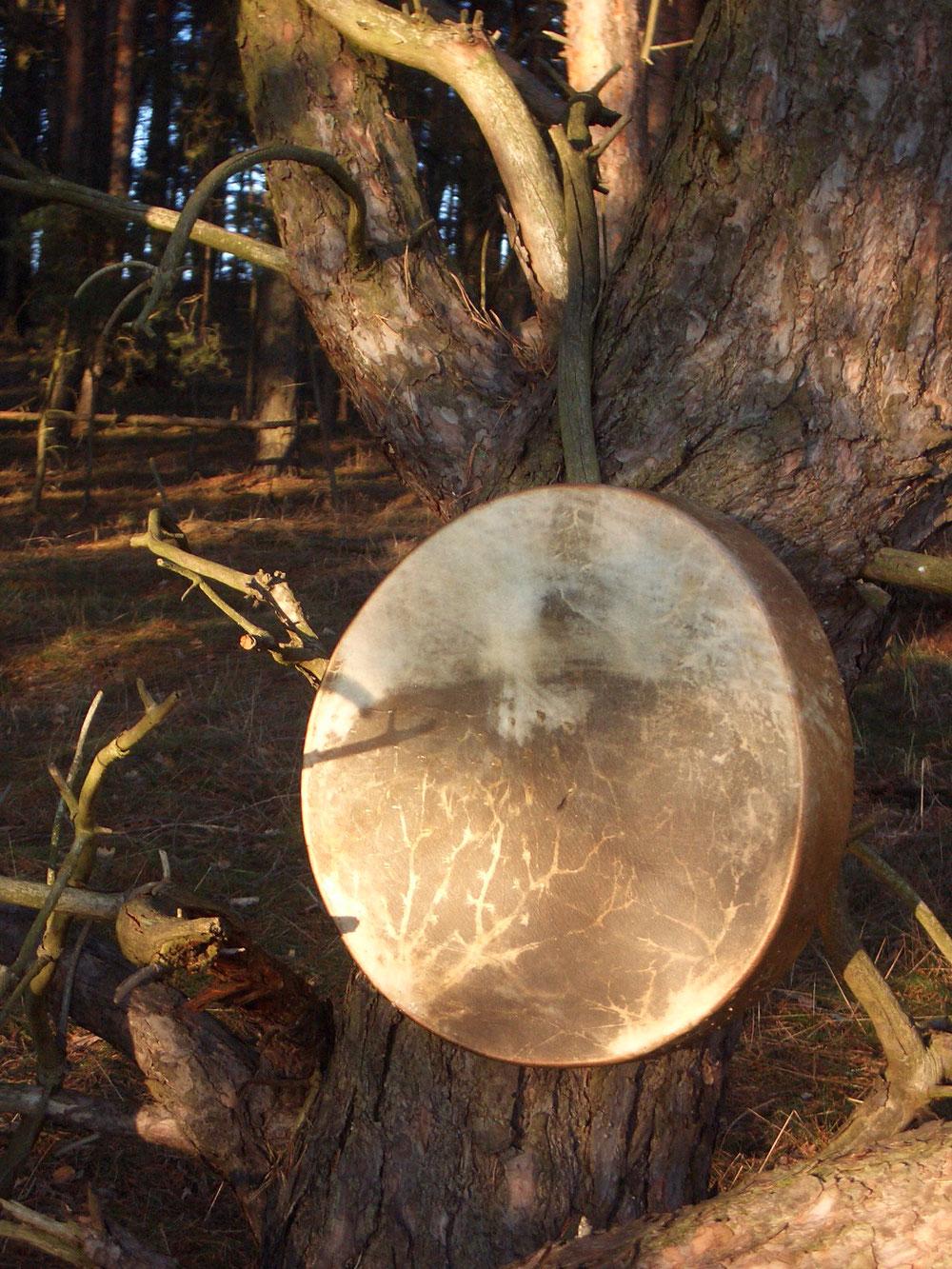 Auf dem Bild sehen Sie eine schamanische Trommel aus der Haut von einem australischen Strauß, die ich vor einigen Jahren für ein besonderes Ritual baute. Straußenadern - die weit verzweigten Äste eines Baumes, der dem Himmel entgegen wächst.