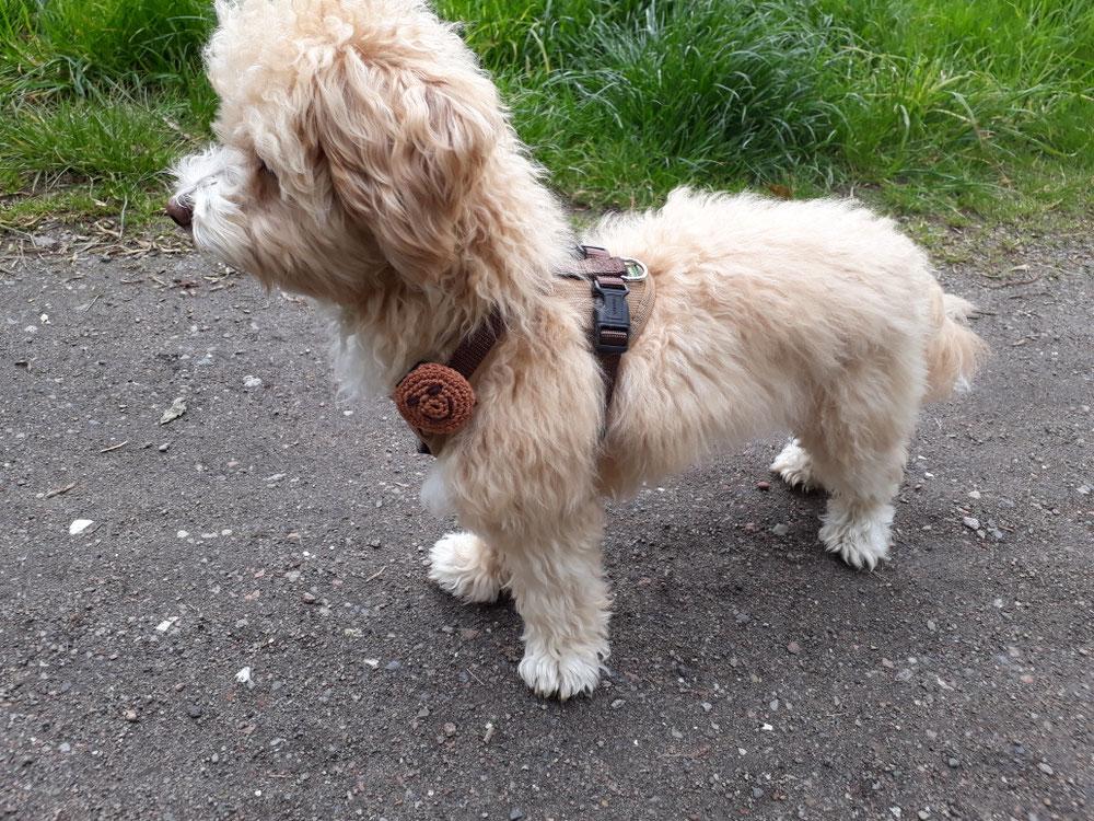 Hundemarken Tasche