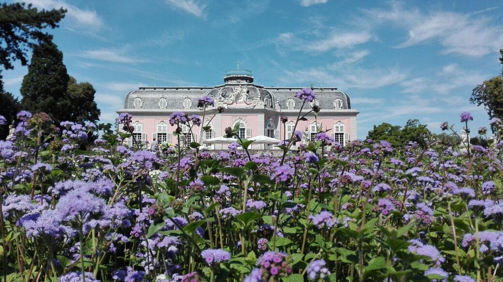 Schloss Benrath - Düsseldorf Sommer