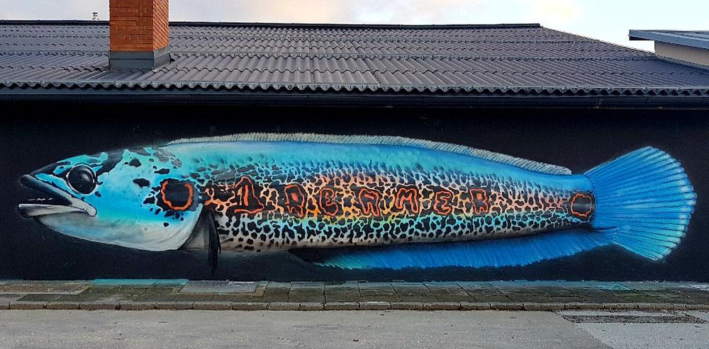 Bigfish time