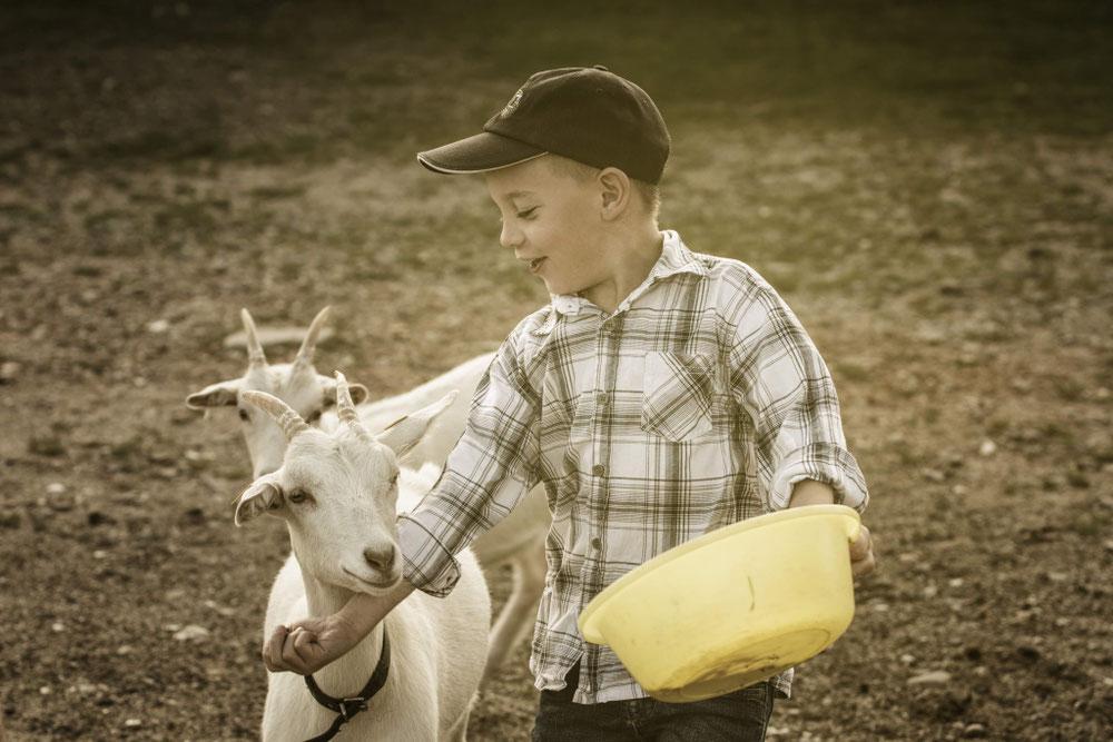 Man erlebt das Landleben ganz nah mit unseren Tieren.